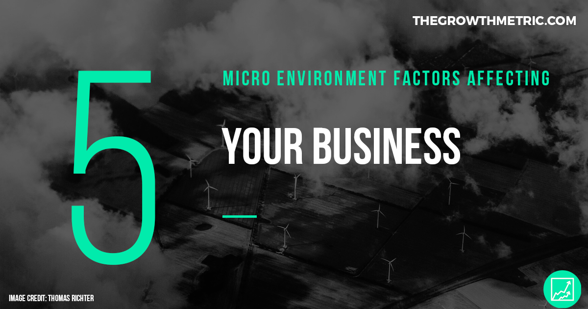 Micro environmental business factors